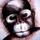Monkey see Monkey do by Jillian