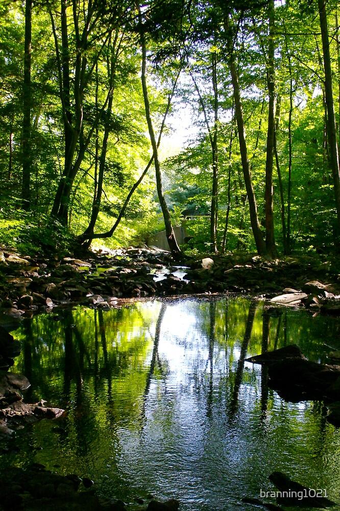 Southford Falls by branning1021