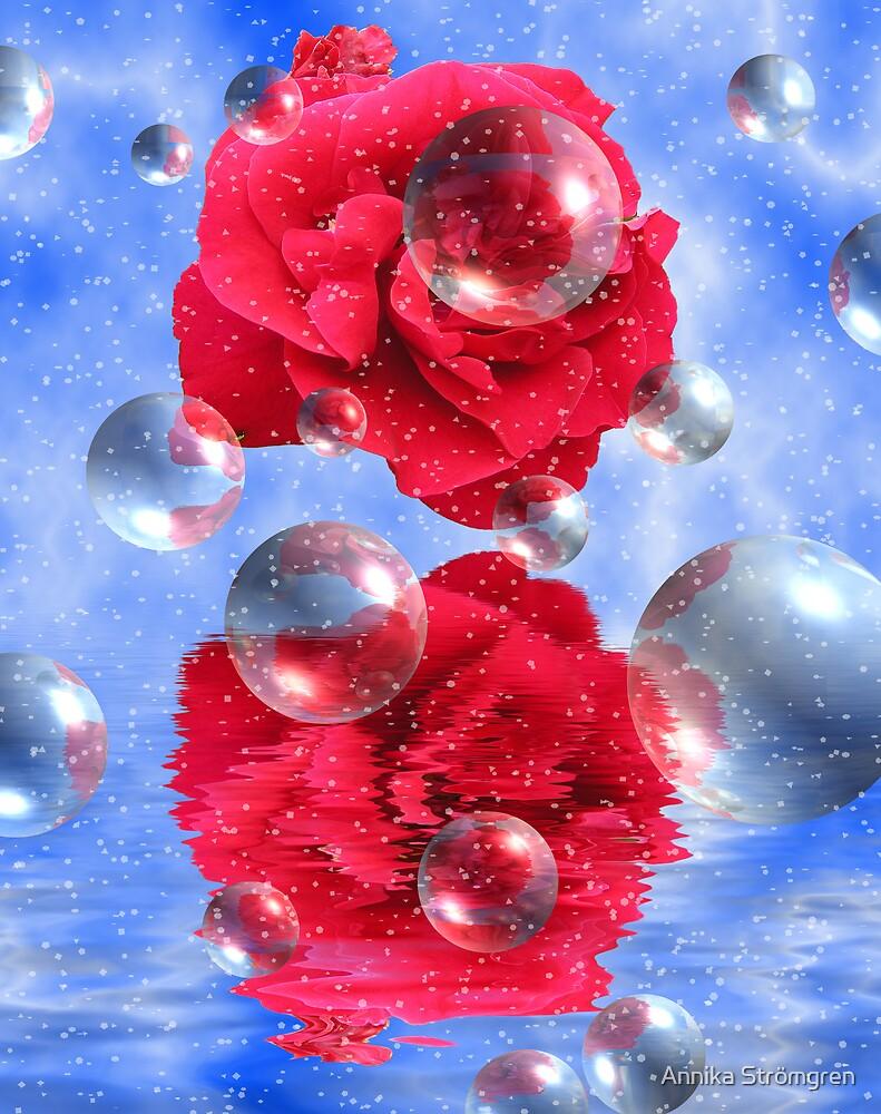 Rose fantasy by Annika Strömgren