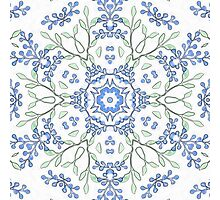 Budded Blue Blossoms Print Photographic Print