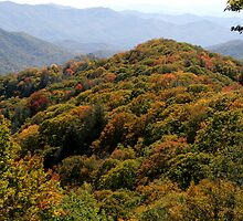 Great Smoky Mountain National Park by Gary L   Suddath