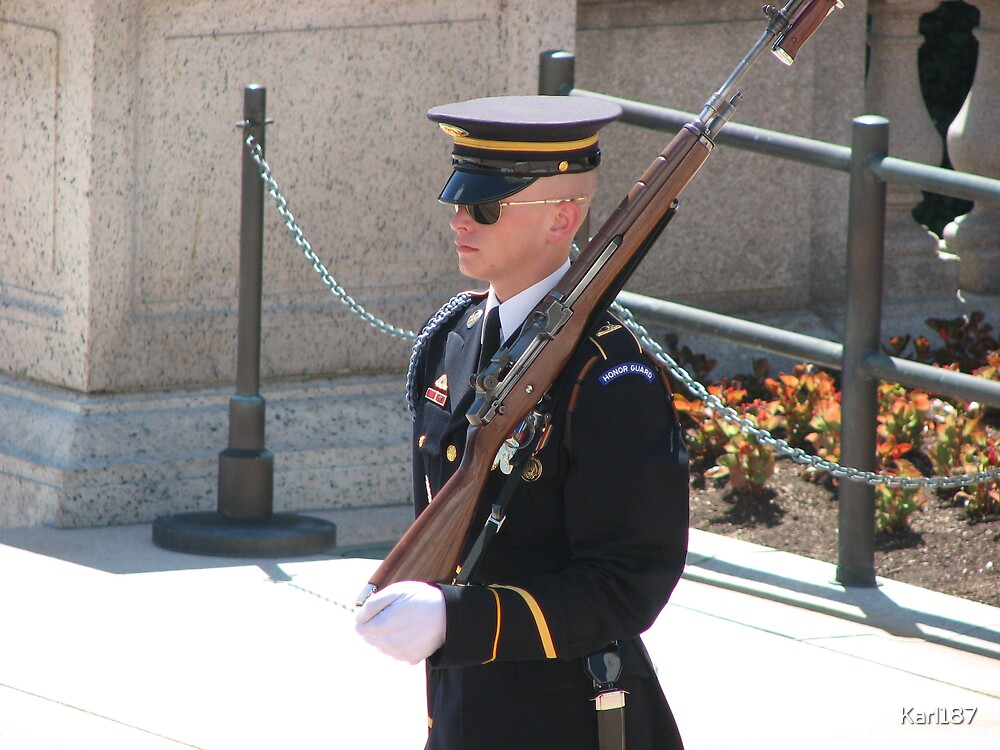 Honor Guard by Karl187