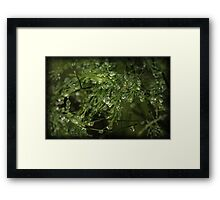 Earth's riches Framed Print