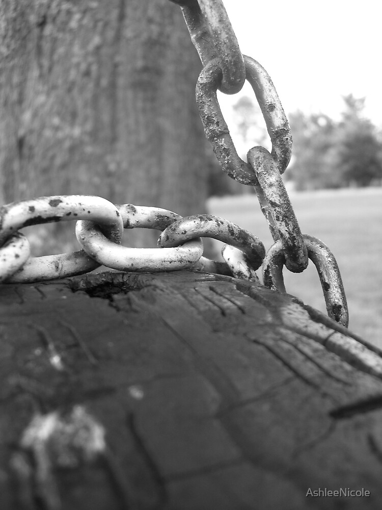 tire hanging from a chain by AshleeNicole