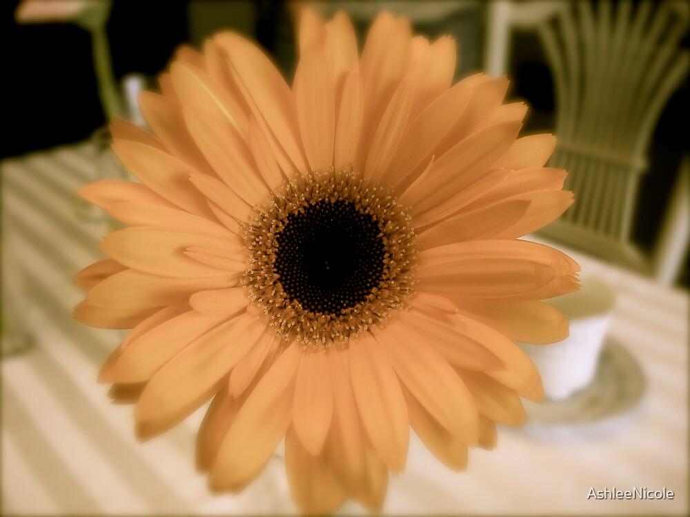 mystic flower by AshleeNicole