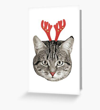 Red Nose Reindeer Cat! Greeting Card
