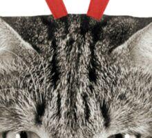 Red Nose Reindeer Cat! Sticker