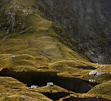 Mackinnon Pass by RobYoung