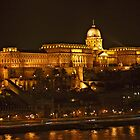 Buda Castle by phil decocco