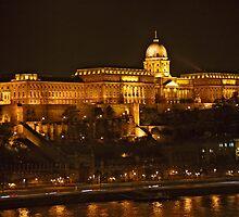 Buda Castle by phil decocco