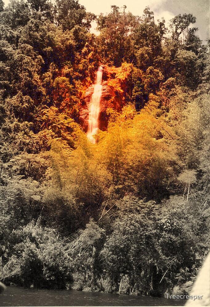 Waterfall by Treecreeper