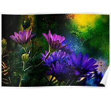 Purple daisy Poster