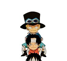 one piece case by termes5