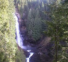 Wallace falls by greenizer