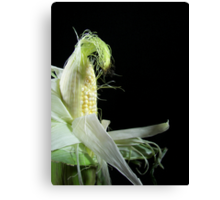 Corn Silk Canvas Print