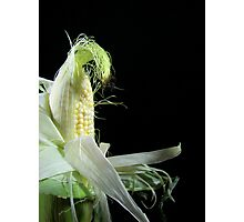 Corn Silk Photographic Print