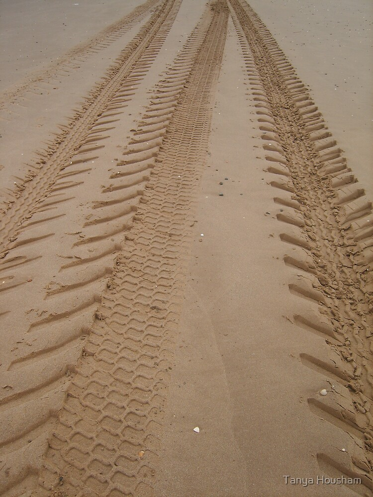 Tracks in the sand by Tanya Housham