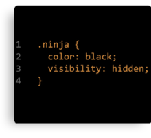 CSS Coding Ninja  Canvas Print