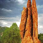 Garden of the Gods by John Sternig