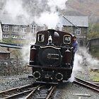 Steamer by Dahlia48