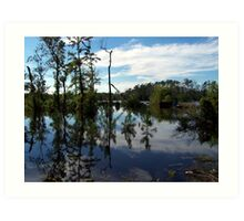 calm flood waters of south east texas 2006 Art Print
