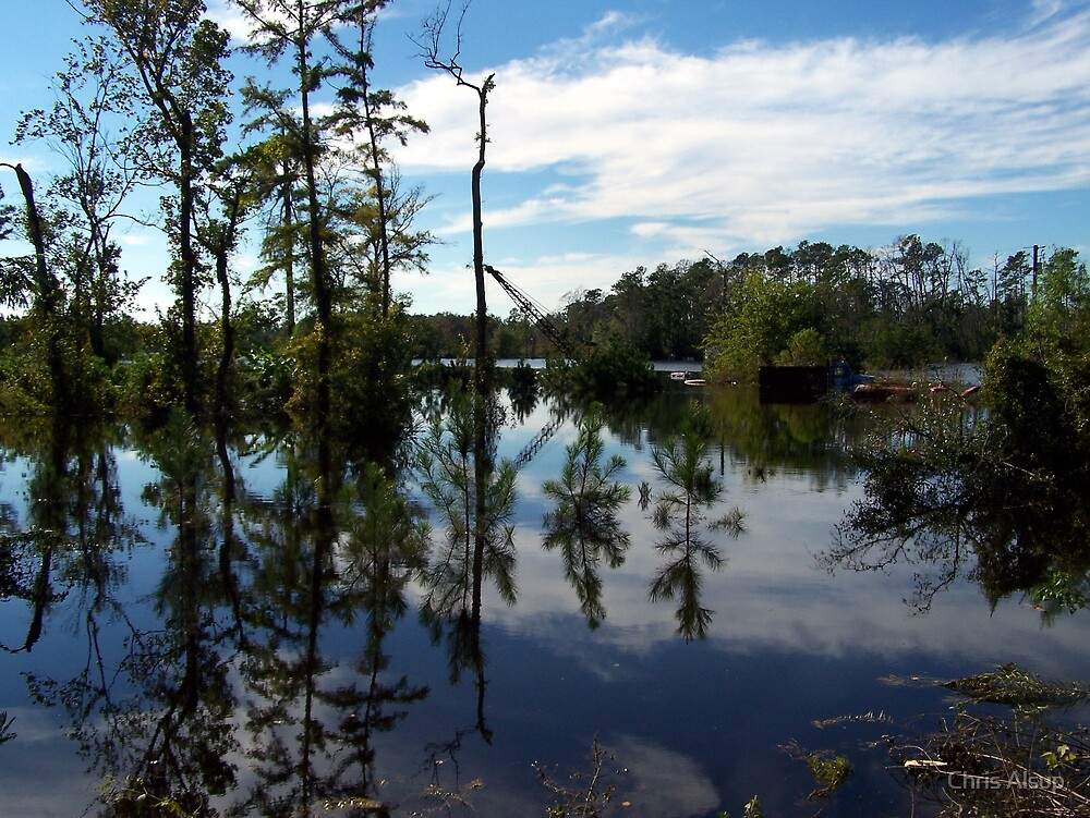calm flood waters of south east texas 2006 by Chris Alsup