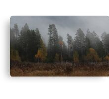 The Layering of Autumn Canvas Print