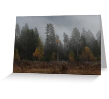 The Layering of Autumn Greeting Card