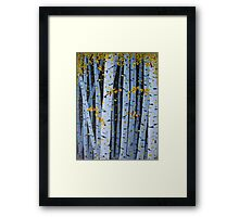 Ten Cardinals In Birch Trees Framed Print