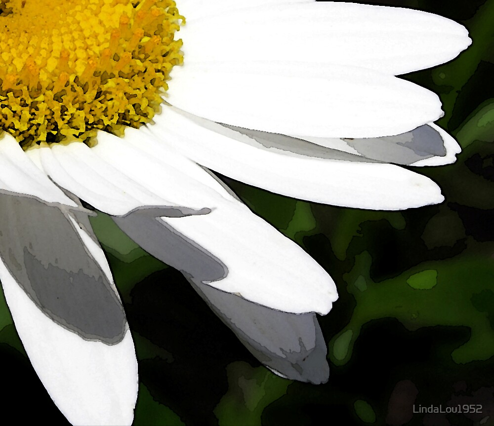 Daisy, Daisy by LindaLou1952