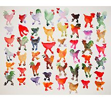 Tie Dye Chickens in Lines #1 Photographic Print