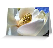 White Crown Greeting Card