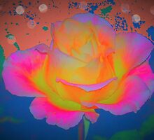 Rose color blast by ♥⊱ B. Randi Bailey