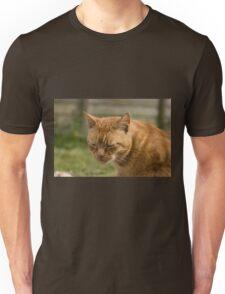 Cute sleepy cat Unisex T-Shirt