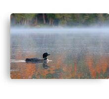 Water colour Loon - Common Loon Canvas Print