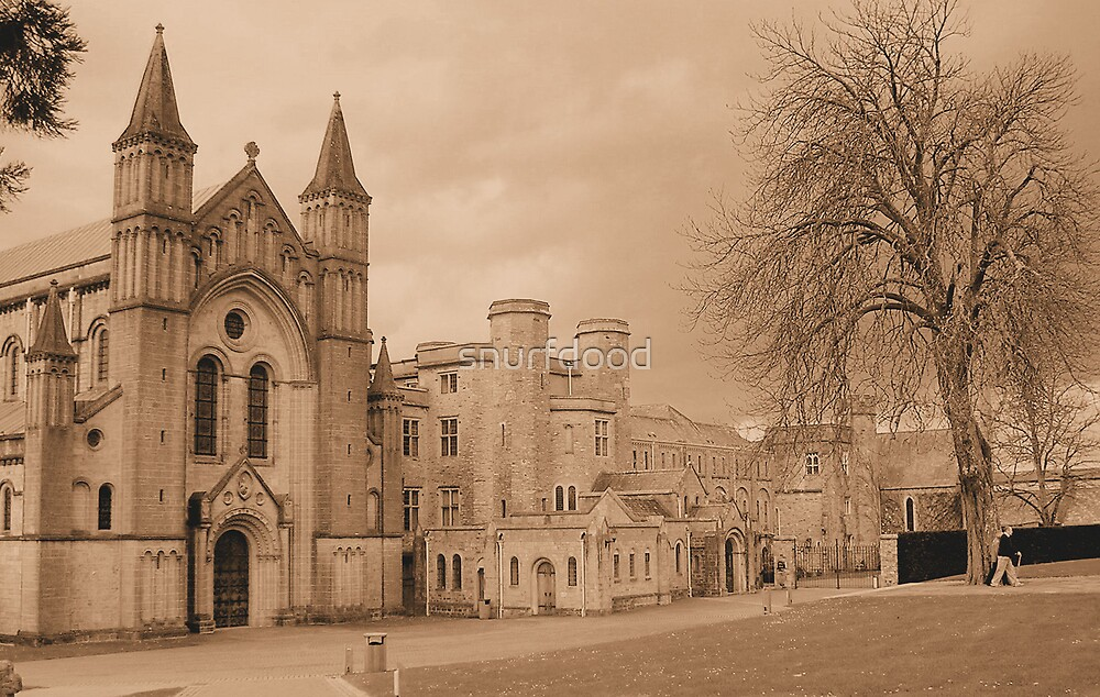 Buckfast Abbey by snurfdood