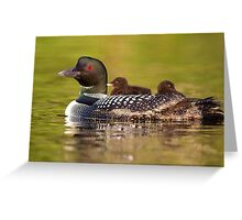 Once around the lake please - Common Loon Greeting Card