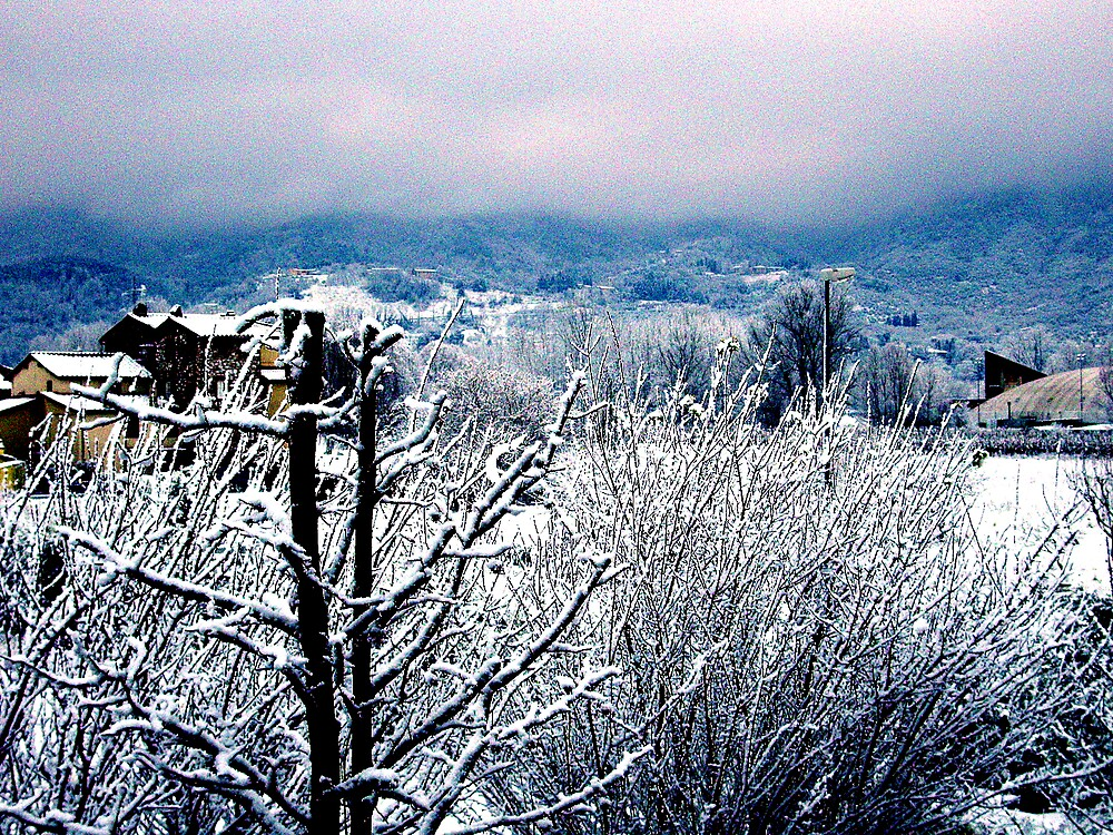 Winter countryside by honey