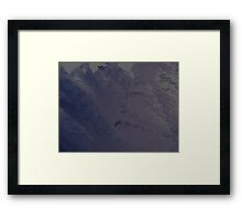 Bluebottle fuzz Framed Print