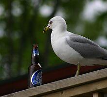 Blue Gull by Dean Harvey