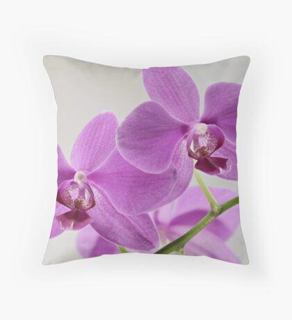 phalaenopsis pink flowers close to Throw Pillow