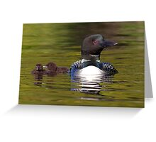 Looniage - Common Loon Greeting Card