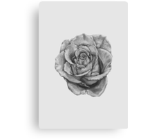 Black And Grey Rose Canvas Print