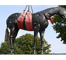 dummy horse Photographic Print