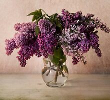 Fresh lilac in glass flowerpot by JBlaminsky