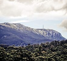 Mt Wellington   by Kelly McGill