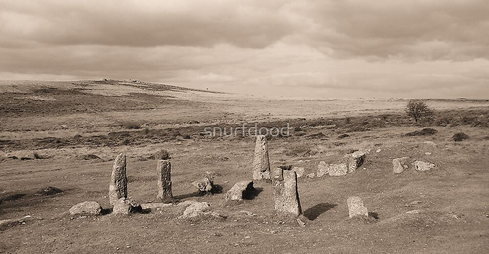 Dartmoor Settlement by snurfdood