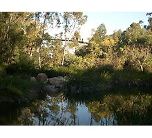 Afternoon reflection Kings Park W.A. Australia.  Photographic Print