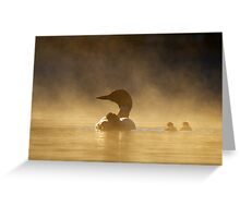 Loons in the mist - Common Loon Greeting Card