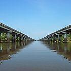 Atchafalaya Basin Bridge by Bonnie T.  Barry